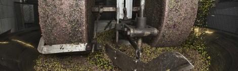 Prevenzione incendi per oleifici e frantoi